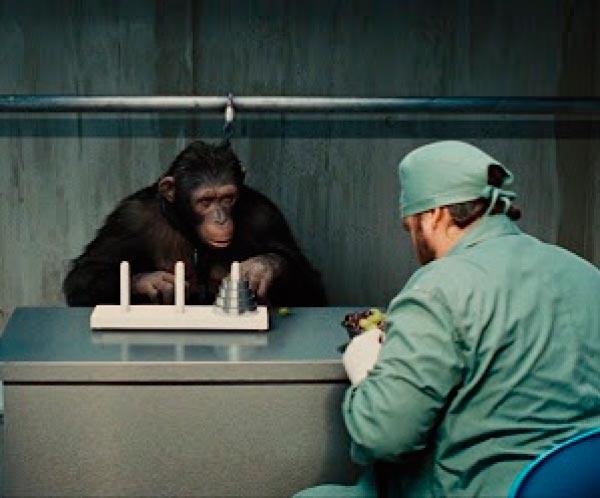O Senhor dos Macacos - ou Quando um psicopata assume o laboratório   Conto Literatura conto ideologia religião Figura do Slideshow #1