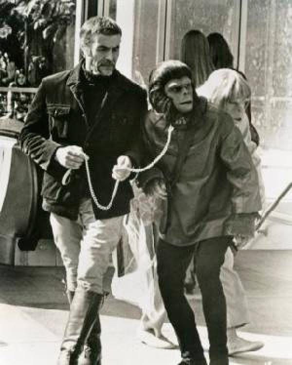 O Senhor dos Macacos - ou Quando um psicopata assume o laboratório   Conto Literatura conto ideologia religião Figura do Slideshow #7