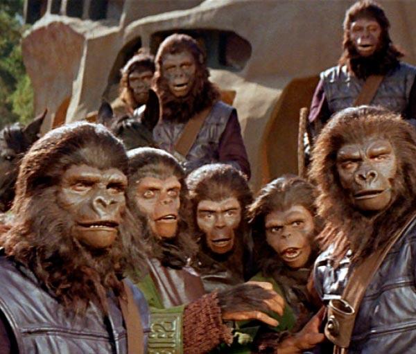 O Senhor dos Macacos - ou Quando um psicopata assume o laboratório   Conto Literatura conto ideologia religião Figura do Slideshow #8