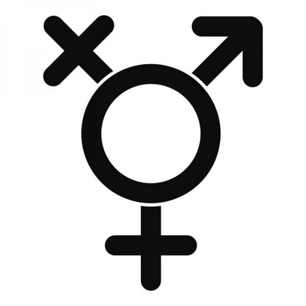 Transgêneros: Cérebro vs. Corpo - O que a Ciência tem a dizer sobre o Gênero? Psicologia & Comportamento psicologia comportamento ciências ideologia sexualidade gênero Figura do Slideshow #4
