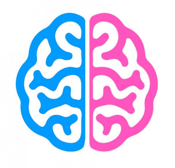 Transgêneros: Cérebro vs. Corpo - O que a Ciência tem a dizer sobre o Gênero? Psicologia & Comportamento psicologia comportamento ciências ideologia sexualidade gênero Figura do Slideshow #7